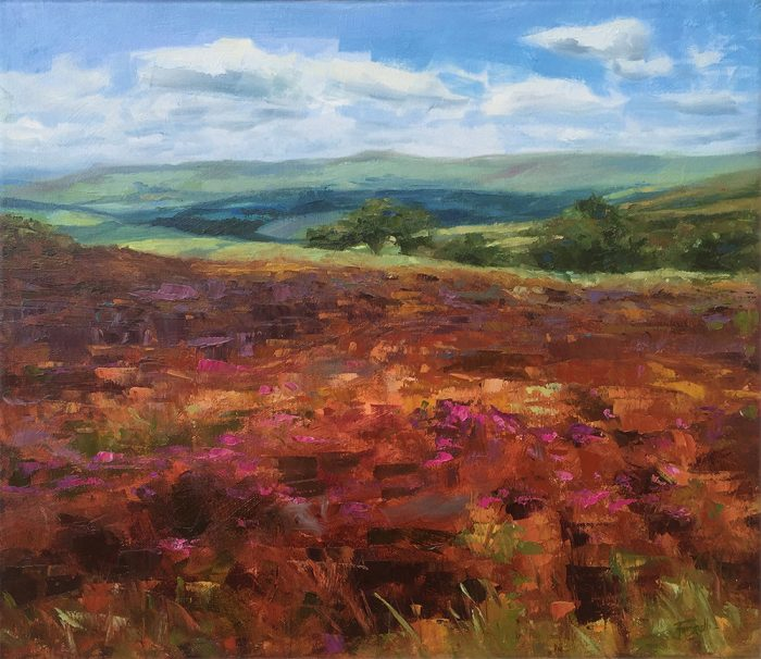 Colours Of Exmoor
